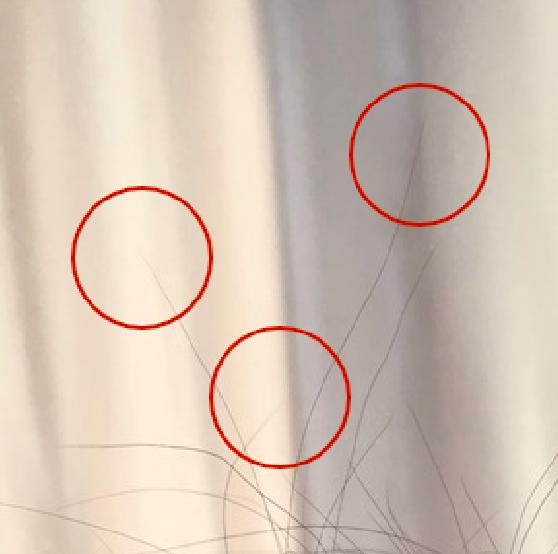 f:id:shinichi5:20151116122547p:plain