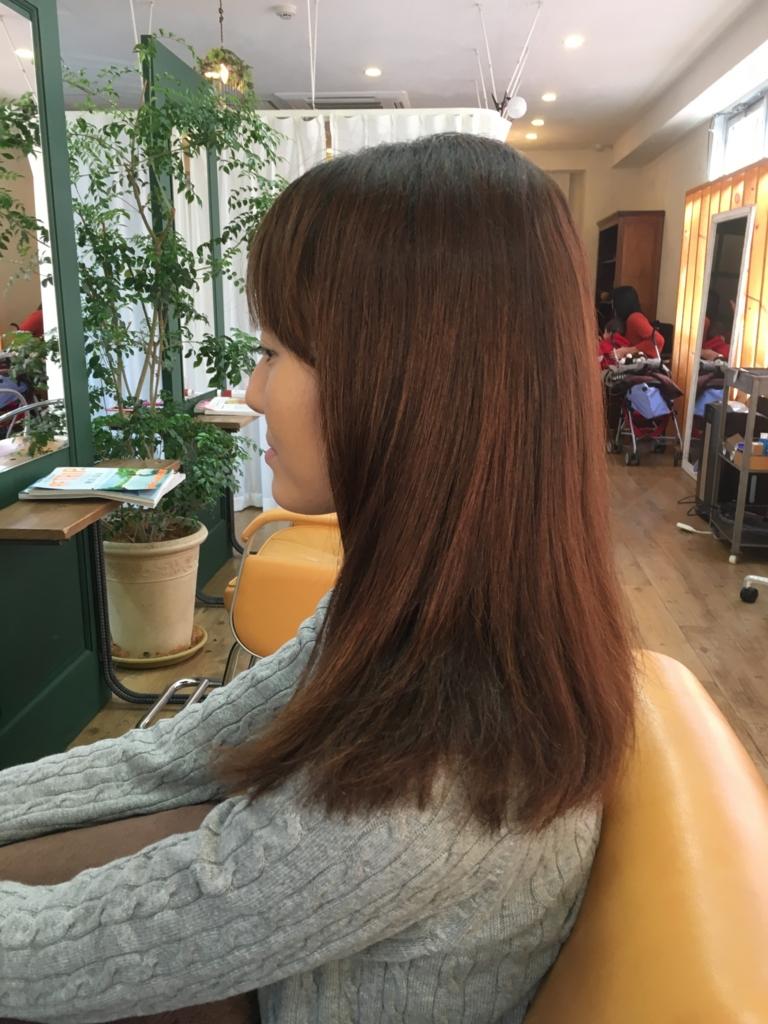 f:id:shinichi5:20151130070856j:plain