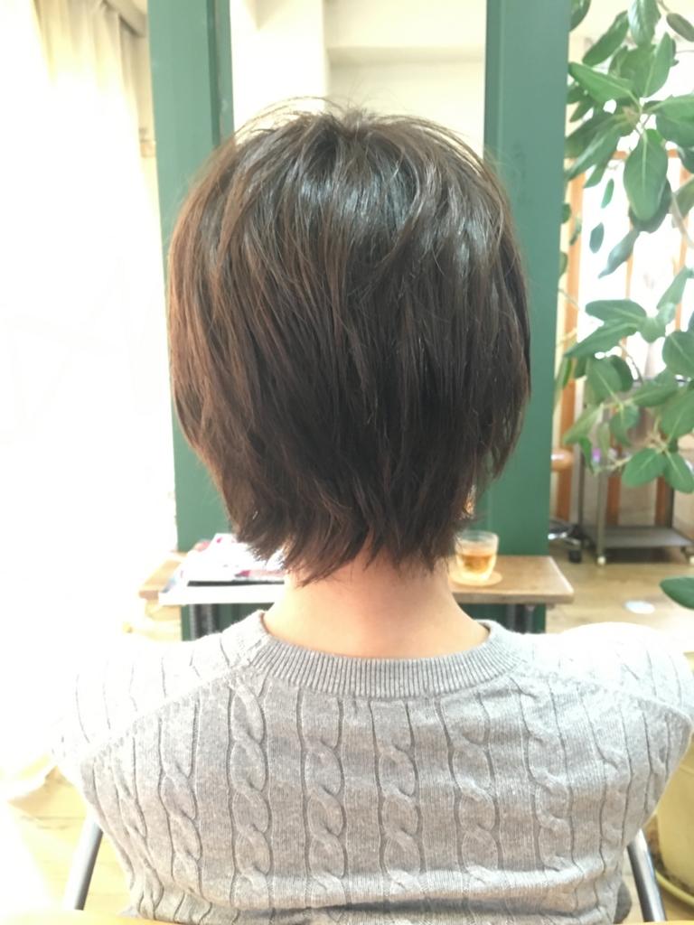 f:id:shinichi5:20151130070924j:plain