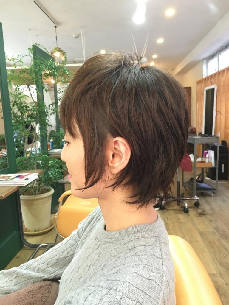 f:id:shinichi5:20151130070949j:plain