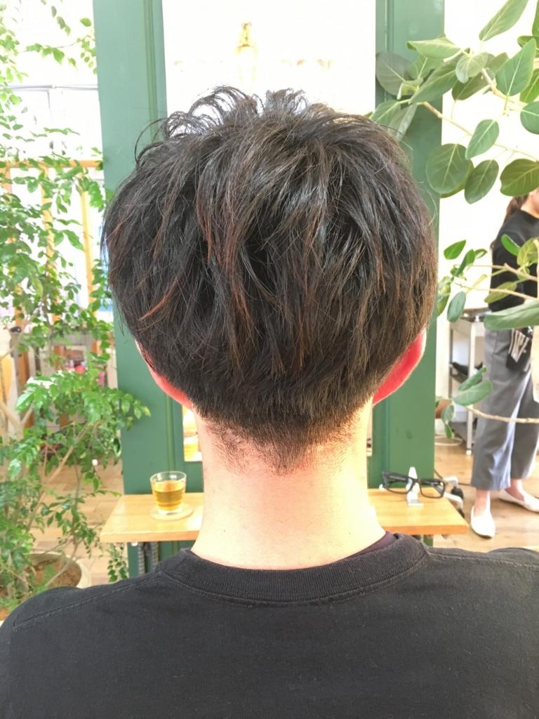 f:id:shinichi5:20151221093156j:plain