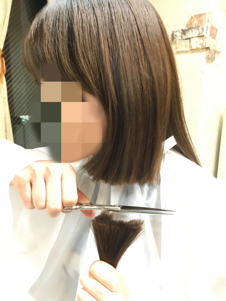 f:id:shinichi5:20160114113817j:plain