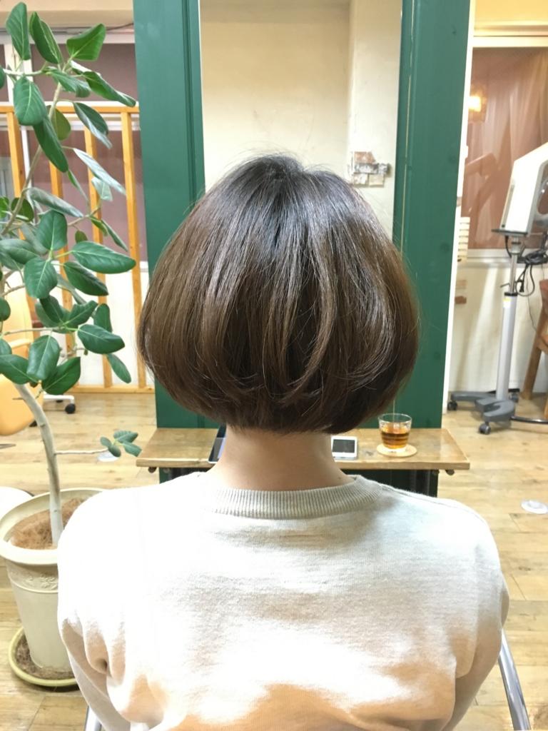 f:id:shinichi5:20160114114713j:plain