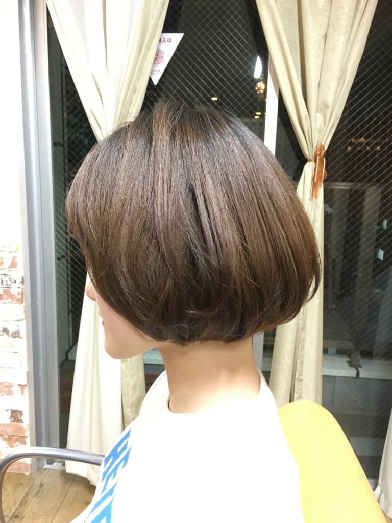f:id:shinichi5:20160114114734j:plain